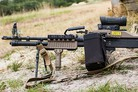 Denmark selects new LMG