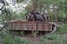 Thai army invents eucalyptus tank armour