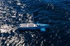 Aussie Bluebottles show signs of intelligence