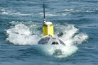 French MoD pushes forward with maritime anti-mine strategy