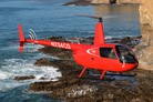 Robinson takes orders for R44 Cadet