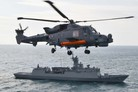 Korea's final Wildcats bare operational claws
